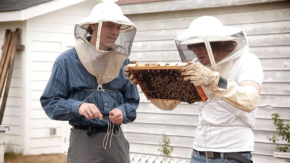 The secret life of honeybees